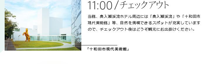 11:00|チェックアウト